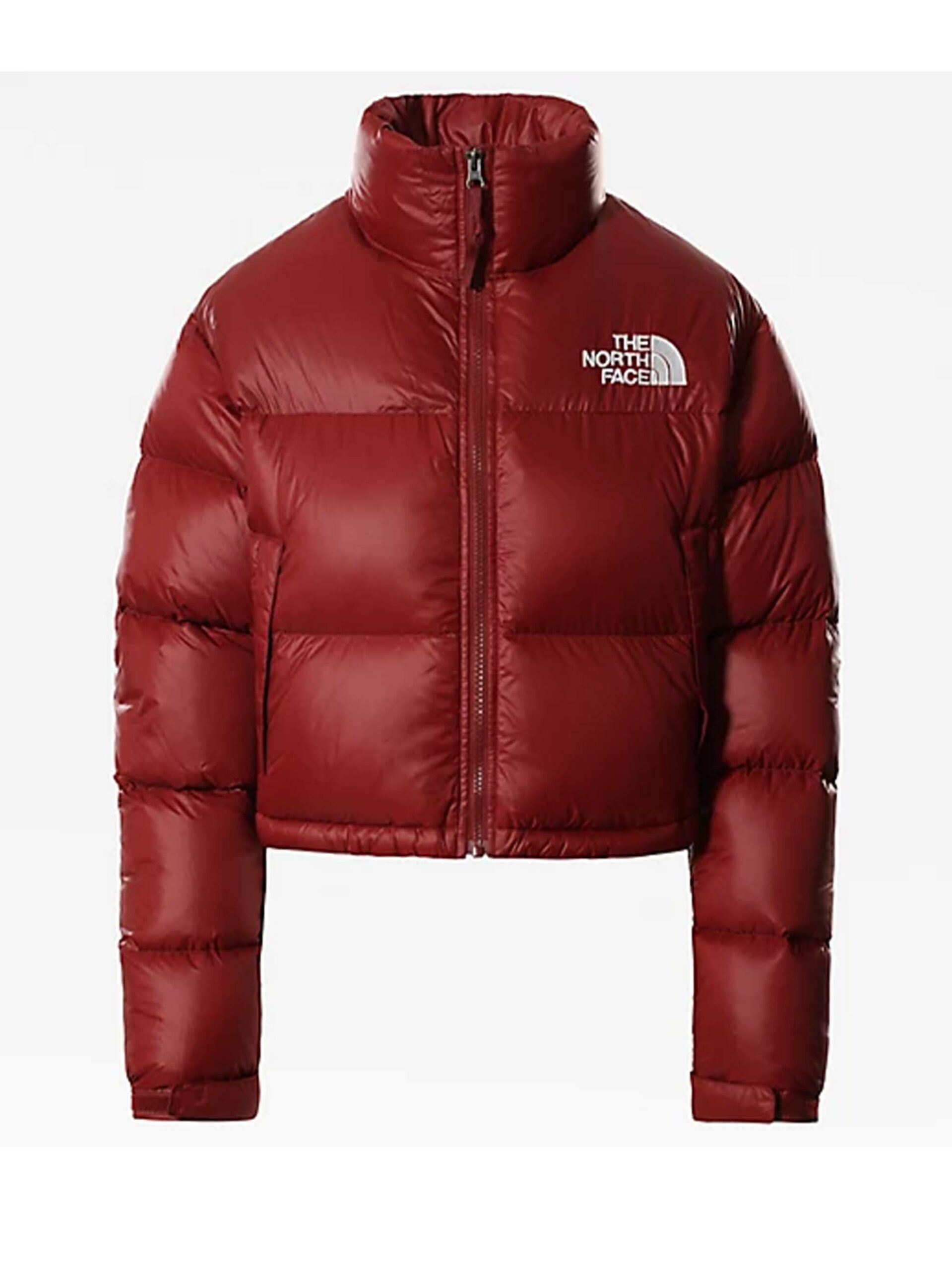 <p class='small-title'>THE NORTH FACE</p>NUPTSE crop brick house red